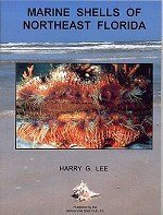Marine Shells of Northeast Florida PDF