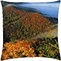 fog in the hills of kentucky - Throw Pillow Cover Case (18