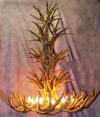 Reproduction Mule Deer Tall Spruce Antler Chandelier Light
