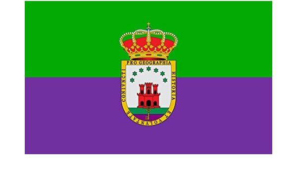 magFlags Bandera Large Mancomunidad de Municipios del Campo de Gibraltar España | Bandera Paisaje | 1.35m² | 90x150cm: Amazon.es: Jardín
