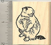 Marmot/ Groundhog Rubber Stamp
