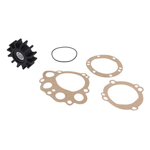 Baosity Replacement for Impeller Sherwood 10077K Onan 132-0375 Westerbeke 11764 33100