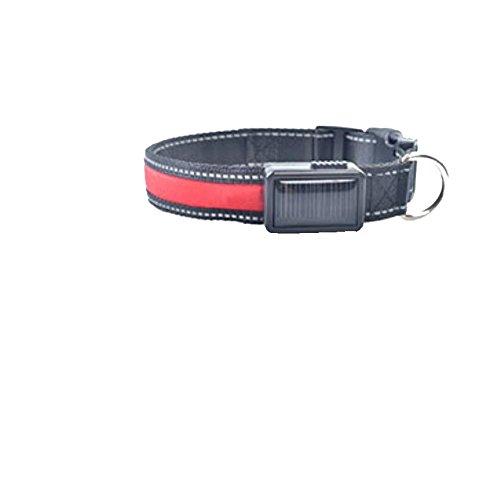 LED solar light collar charging flashing pet supplies , red