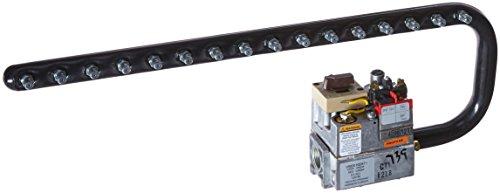 Zodiac R0496405 Propane Gas Manifold Assembly Replacement...