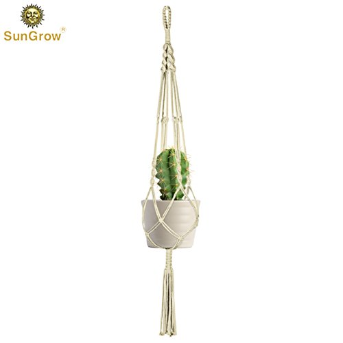 Great plant hanger