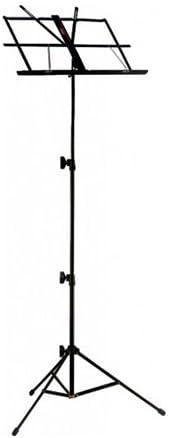 Black Meisel Electric Violin Deluxe w//Accessories