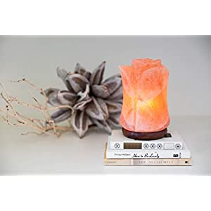 d'aplomb 100% Authentic Natural Himalayan Salt Lamp; Hand Carved Flower Rose Pink Crystal Rock Salt from Himalayan Mountains; great Mother's Day gift, UL-listed Dimmer Cord; 8 lbs