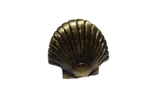 "Antique Brass Finish Large Sea Shell Drawer Knob – Solid Brass 1.7""L Set of 2 ()"