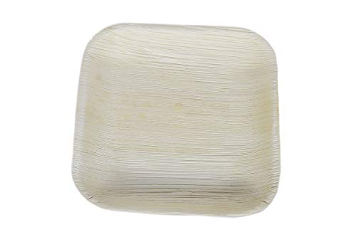 Eray Areca Leaf Shallow Square Disposable Plate for Party  7 Inch, 10 Pc