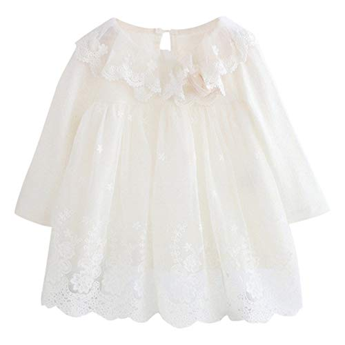 youeneom Dress for Girls, Cartoon Embroidery Lace Tulle Princess Dress Baby Clothes (White, 3-6 Months)