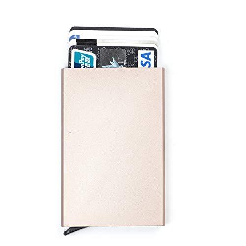 TRIWONDER RFID Blocking Credit Card Case Holder - Aluminum Slim Wallet Credit Card Holder (Champagne)