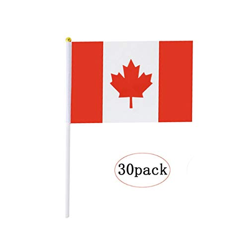 - Canada Stick Flag,Canadian Hand Held Mini Small Flags On Stick International Country World Stick Flags For Party Classroom Garden Olympics Festival Clubs Parades Parties Desk Decorations(30 pack)