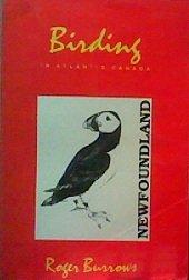 birding in atlantic canada - 2