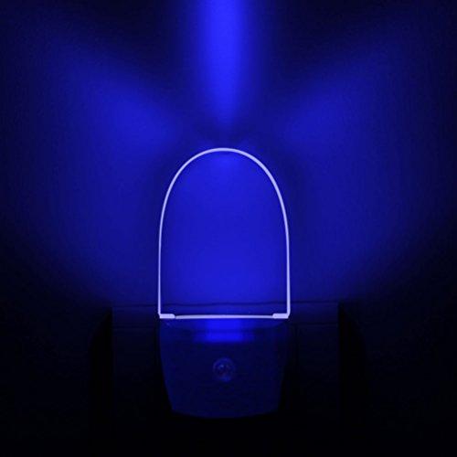 220 Volt Led Night Light in Florida - 7