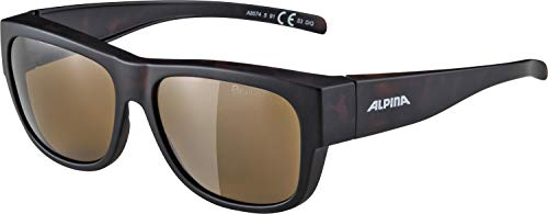 2bde202bf1c Alpina (arupina) Overview II Sunglasses a8574591 Havana for sale Delivered  anywhere in USA