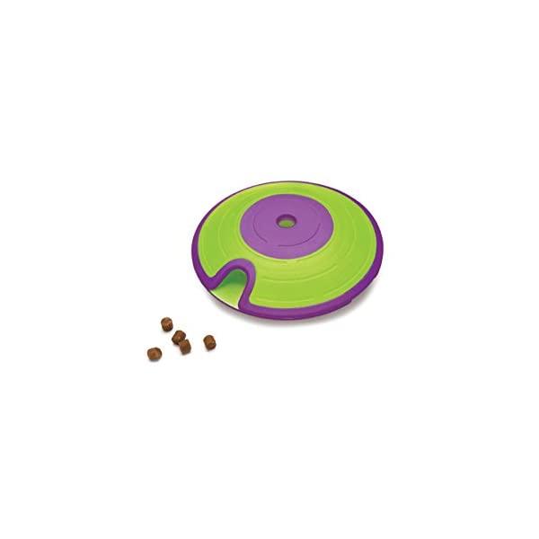 Maze Treat Dispensing Dog Toy Brain and Exercise Game for Dogs, by Nina Ottosson Green/Purple 1
