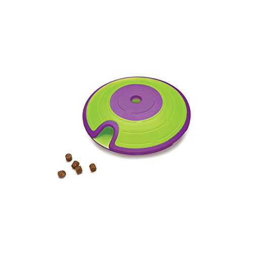 Maze Treat Dispensing Dog Toy Brain and Exercise Game for Dogs, by Nina Ottosson Green/Purple