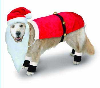Outward Hound Kyjen Dog Santa Suit w/Boots u0026 Hat w/Beard ...  sc 1 st  Amazon.com & Amazon.com : Outward Hound Kyjen Dog Santa Suit w/Boots u0026 Hat w ...