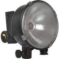 Lowel DP 1000 Watt Focusing Flood Light (120-240V AC)