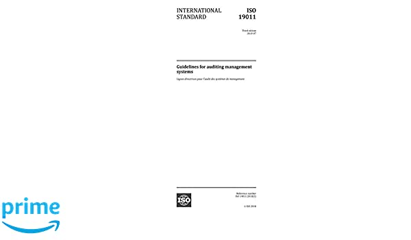 iso 19011 principles of auditing