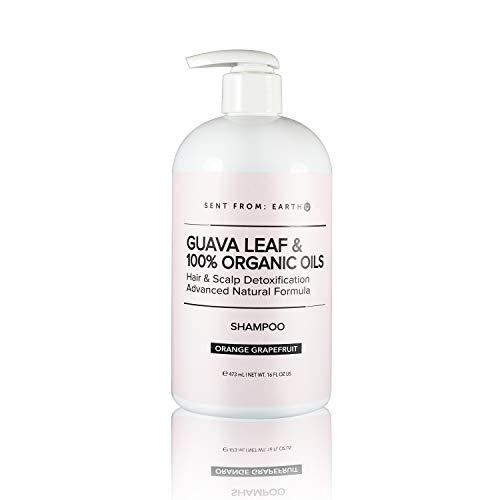 [Sent From Earth] GUAVA LEAF & 100% ORGANIC OILS Hair & Scalp Detoxification Shampoo Advanced Natural Formula 16oz.