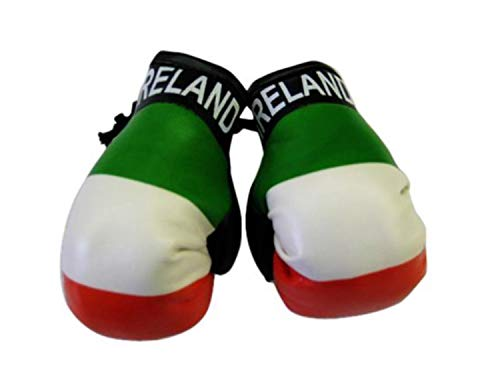 Flag Mini Small Boxing Gloves to Hang Over Car Automobile Mirror -Europe (Country: Ireland) ()