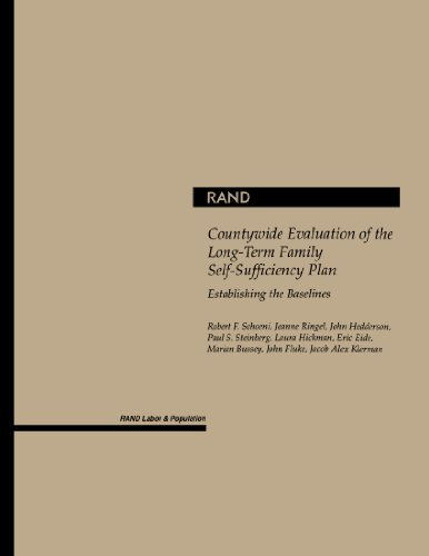 Evaluation of the Long-Term Family Self-Sufficiency Plan in Los Angeles County: Establishing the Baselines