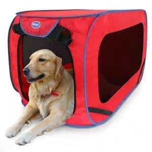 Amazon Com Pop Open Dog Kennel X Large By Sportpet