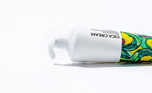 SKEDERM Cica Cream Madecassoside Repairing Face Moisturizer, 50ml / 1.69.oz