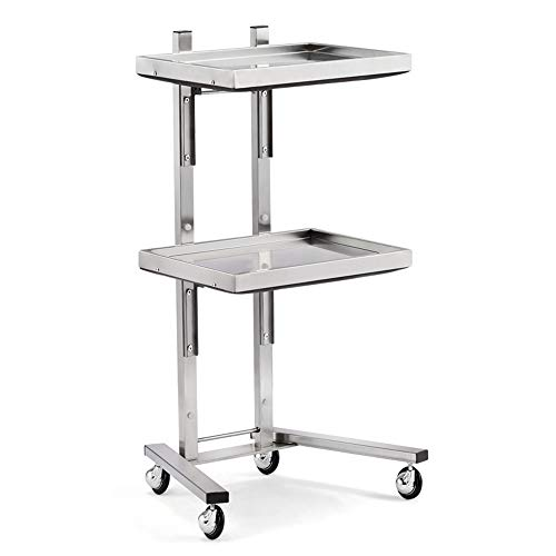 GYJ Beauty Rolling Trolley Cart Equipment, Stainless Steel Tray Stand, Medical Salon Equipment Tattoo, Highly Acclaimed and Made to Last!