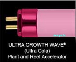 Wave-point Ultra Growth Wave High Output T5 22