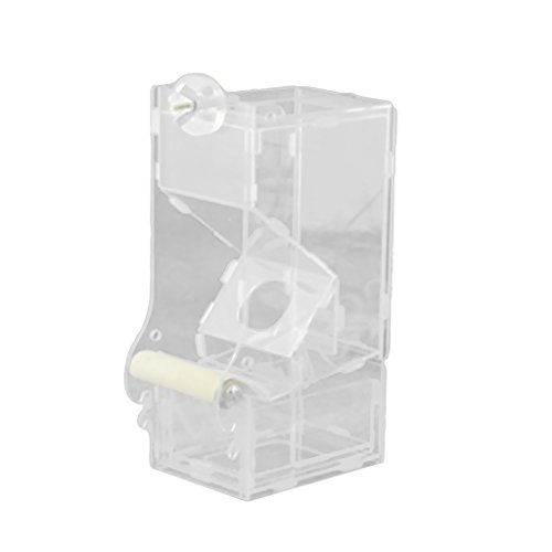 Acrylic Parrot Automatic Feeder Medium