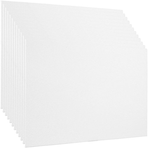 US Art Supply 12 X 24 inch Professional Artist Quality Acid Free Canvas Panel Boards for Painting 12-Pack (1 Full Case of 12 Single Canvas Board Panels) by US Art Supply