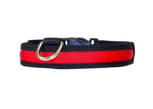 PRECORN Collier de chien LED Zandoo incl Batterie dans rouge Taille M 40-50 cm