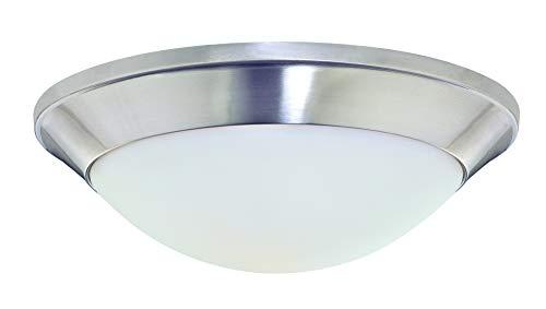 Designs Flush Satin Dolan Lighting Mount - Dolan Designs 5401-09 Rainier 1 Light Flush mount, Satin Nickel