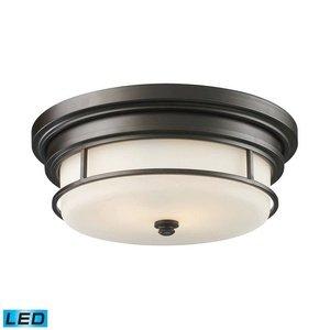 ELK 66254-2-LED, Newfield Round Glass Flush Mount Ceiling Lighting, 2 Light LED, Oiled Bronze