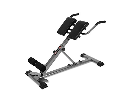 H-TRAINING Muscle Training 脊椎の筋肉 腰の筋肉の強化運動 Roman chair Push up Fitness Home training BS BLACK and STAINLESS(海外直送品)   B07CW96S83