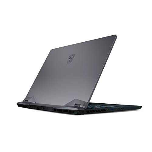 "MSI GE66 Raider 10SGS-288 15.6"" 300Hz 3ms Gaming Laptop Intel Core i7-10875H RTX2080 Super 32GB 1TB NVMe SSD Win10 VR Ready"