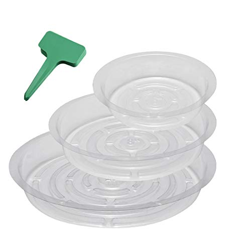 GROWNEER 15-Pack Clear Plant