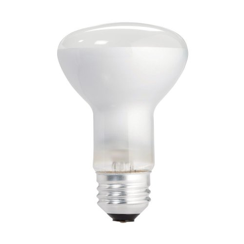 Philips 223115 Soft White 45-Watt R20 Indoor Flood Light Bulb, 12-Pack