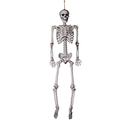 Kiar Halloween Party Decoration Full Size Human Skull Skeleton Anatomical