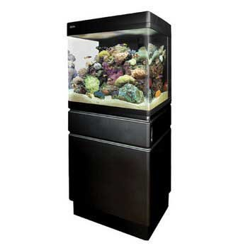 Red Sea Fish Pharm ARE40120 Max 130D Coral Reef Tank for Aquarium, (Red Sea Max Reef Aquarium)