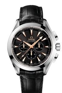 Omega Watch Seamaster Aqua Terra 231.53.44.50.01.001 Co-axial Automatic Winding K18wg Innocent
