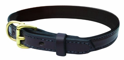 Perri's Leather Dog Collar, Black, Medium/15-19-Inch, My Pet Supplies
