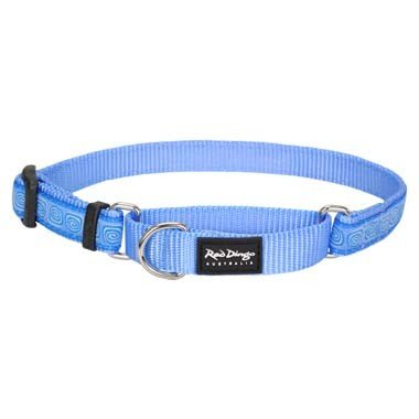 Red Dingo Hypno Blue Large Martingale Collar