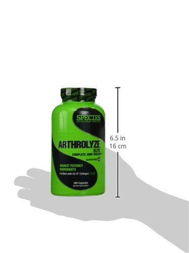 Species Nutrition Arthrolyze Elite, 300 Count by Species Nutrition: Amazon.es: Salud y cuidado personal