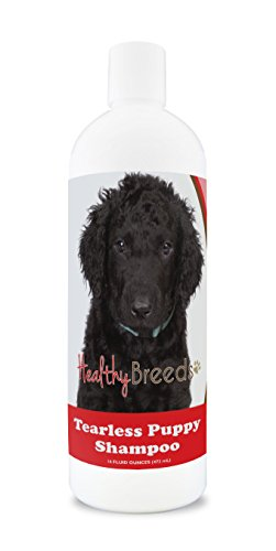 Healthy Breeds Tearless Puppy Shampoo for Curly-Coated Retriever - OVER 100 BREEDS - Nourishes & Moisturizes for Growth - Safe with Flea and Tick Topicals - 16 oz by Healthy Breeds