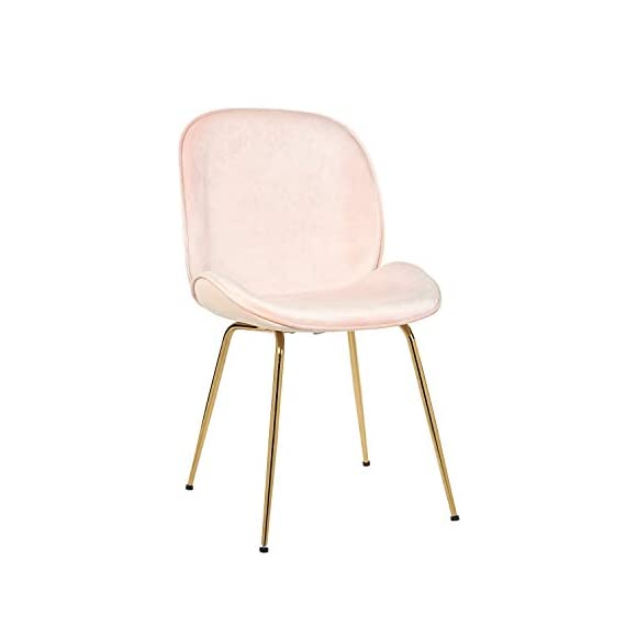 Art Leon Velvet Chair Soft Upholstered Modern Shell Beetle Leisure Chair with Gold Legs for Living Dining Room Bedroom Dresser (Sakura Pink) - Modern and stylish: Classic shell-shaped curved design with practical and beautiful appearance. Lovely sakura pink instantly catch your eyes. Soft velvet upholstery, comfortable and delicate texture. No stimulation of the skin. Advanced gold plating technology makes the coating stays at least for 5 (five) years for indoor use. Ergonomic design: With contoured seat padding, low and mid lumbar support helps to relieve back tightness. Comfy for long time seating. No armrests design provides ample space for a variety of sitting positions, with soft cushion for a superior sitting feeling. To adjust the chair balance by rotating the caps under the legs. - living-room-furniture, living-room, accent-chairs - 31256fOgpzL. SS570  -