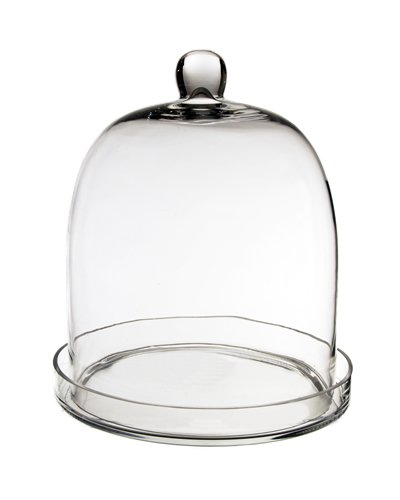 CYS GCL110/11 Cloche Bell Glass Dome with Tray, 11