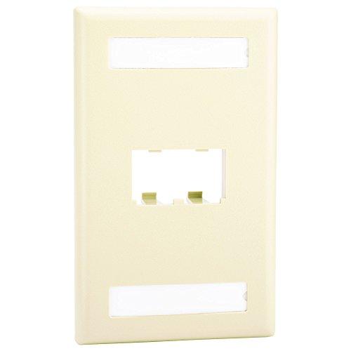 Panduit CFPL2EIY 1-Gang 2-Port Faceplate, Electric Ivory